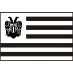 Flag of PAOK
