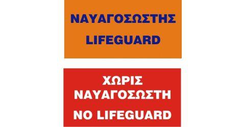 Lifeguard flags
